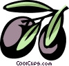 Vector Clip Art image  of a plums
