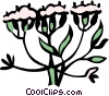 Vector Clipart graphic  of a dill