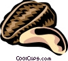 brazil nut Vector Clipart illustration