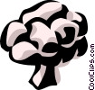 Vector Clipart illustration  of a cauliflower