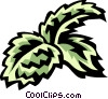 Vector Clip Art image  of a mint