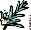 Vector Clip Art graphic  of a rosemary