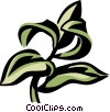 Vector Clip Art graphic  of a hyssop