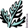 chervil Vector Clipart image