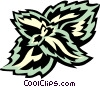coleus Vector Clipart illustration