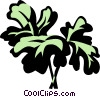 parsley Vector Clip Art image