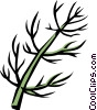 fennel Vector Clip Art graphic