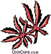 vine maple Vector Clip Art picture