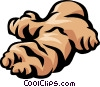 Vector Clipart illustration  of a ginger root