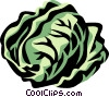 Vector Clipart graphic  of a radicchio