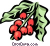 coffee beans Vector Clipart graphic