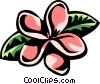 Vector Clipart illustration  of a Plumeria