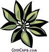 madrone Vector Clipart illustration