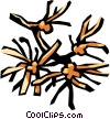 Vector Clipart image  of a witch hazel