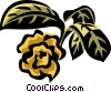 paw paw Vector Clipart illustration