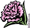 Vector Clip Art graphic  of a carnation