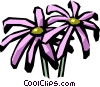 Vector Clipart graphic  of a pyrethrum