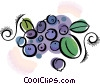 grapes Vector Clip Art picture