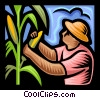 farmer picking corn Vector Clipart illustration