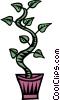 house plants Vector Clip Art picture