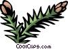 pine nuts Vector Clip Art image