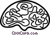 Vector Clip Art image  of a brain