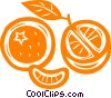 Orange slices Vector Clipart illustration