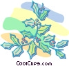 Christmas holly Vector Clipart illustration