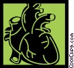 Vector Clipart illustration  of a Human Heart