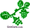 Vector Clip Art picture  of a Grapes