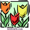 Vector Clipart graphic  of a tulips