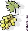 grapes Vector Clip Art graphic