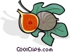 Vector Clip Art image  of a figs