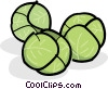 Brussels sprouts Vector Clip Art picture
