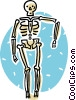 Vector Clipart graphic  of a skeleton