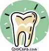 Vector Clip Art graphic  of a human tooth