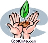 Seeds and Planting Vector Clip Art picture