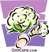 cauliflower Vector Clipart picture
