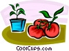tomatoes Vector Clipart picture