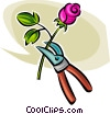 gardening shears and a rose Vector Clipart image