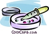 microorganisms in a petri dish Vector Clip Art picture