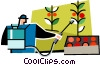 Vector Clipart graphic  of a person watering the tomatoes