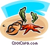 Vector Clipart image  of a starfish and seashells