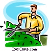 man trimming a hedge Vector Clip Art picture