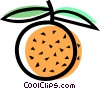 Vector Clip Art graphic  of a Peaches