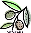 Olives Vector Clipart graphic