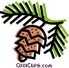 Vector Clipart graphic  of a Coniferous