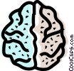 Brain Vector Clipart image