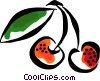 cherries Vector Clipart graphic