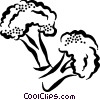 broccoli Vector Clipart graphic